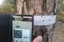 남부지방산림청, 소나무재선충병 전량 방제를 목표로