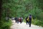 미세먼지 청정지역, 울진 금강소나무숲길에서 힐링하세요!